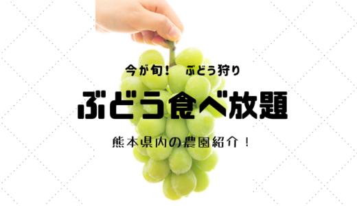 【ぶどう狩り】食欲の秋 !食べ放題可能な農園と持ち物リスト【熊本】